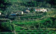 Azienda-Persiani